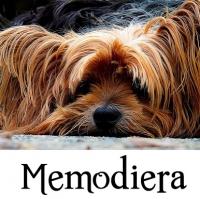 Memodiera Huisdierenafscheid