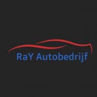 rays-autobanden-breda-nl